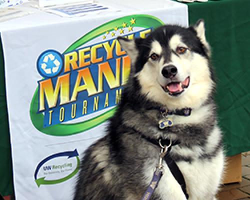 Dubs the dog in front of RecycleMania sign