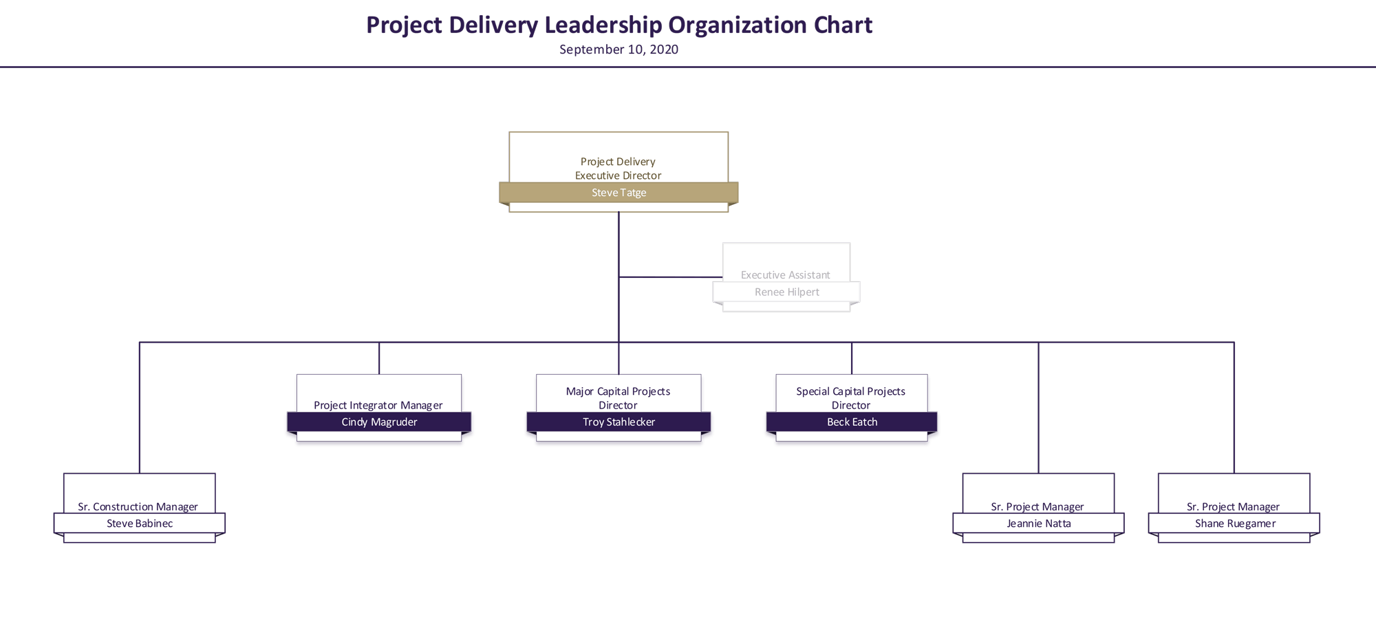 project delivery organization chart