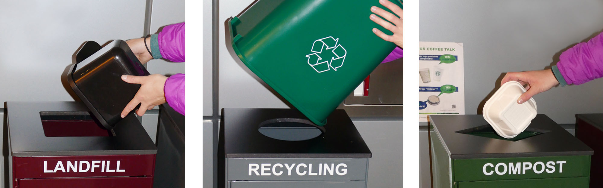 person's hands emptying black container in landfill receptacle, a green container in a recycling receptacle and a small compostable clamshell container in a compost receptacle