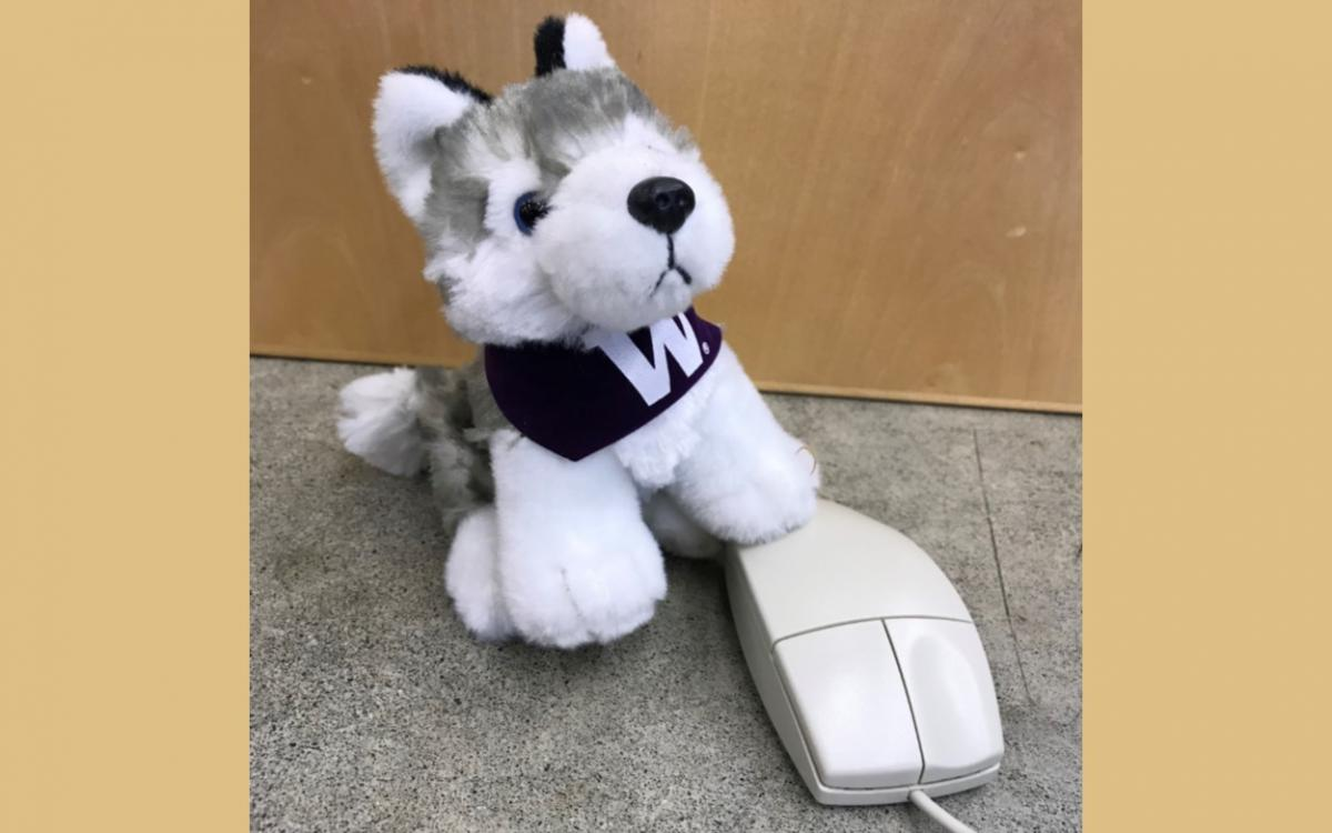 dubs stuffed animal with paw on a computer mouse